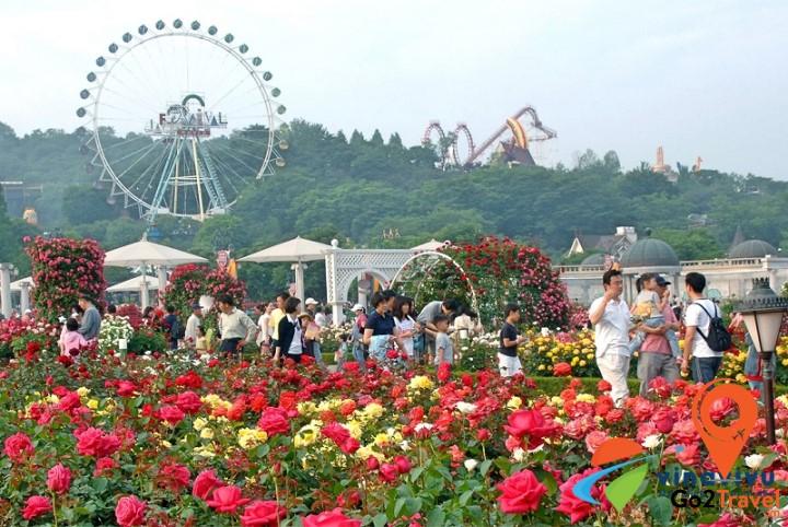 Everland là công viên giải trí có quy mô lớn nhất và hiện đại nhất Hàn Quốc