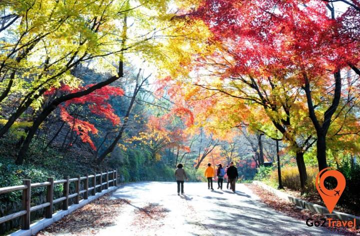 Namsan cũng là một ngọn núi vô cùng nổi tiếng hàn Quốc