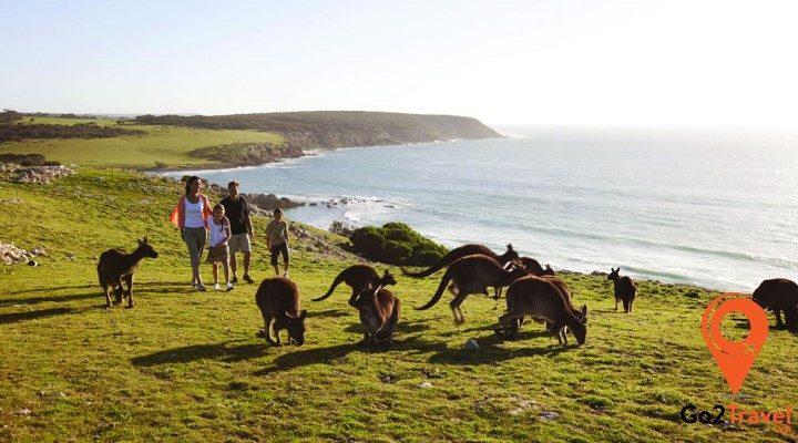 cảnh quan Úc
