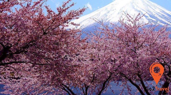 Thời gian xét duyệt visa Nhật