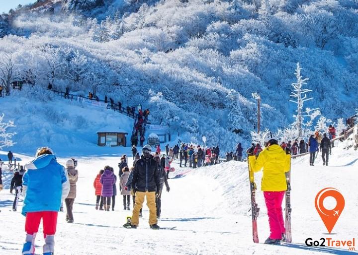 Lễ hội tuyết Taebaeksan