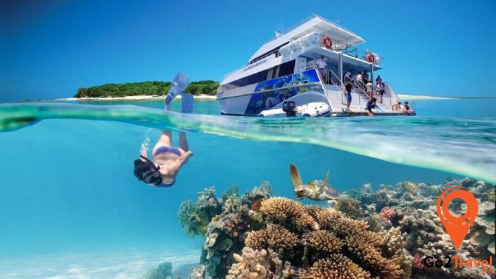 Khám phá rạn san hô