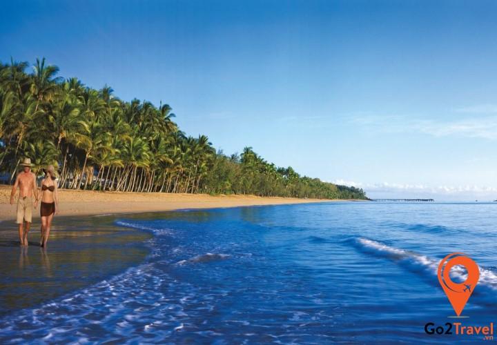 Dọc bờ biển Palm Cove còn có hàng dừa xanh che bóng mát