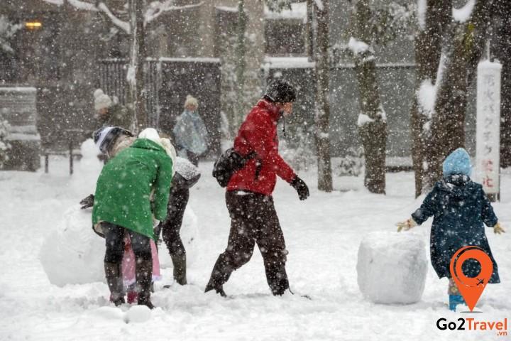 Thể thao mùa đông ở Nhật Bản