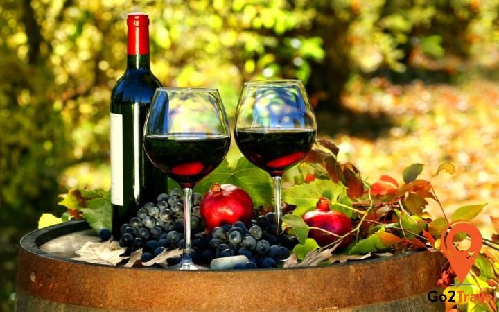 Pháp là một trong những quốc gia Châu Âu có lịch sử lâu đời về sản xuất rượu nho
